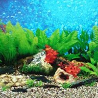Best-Aquarium-Gravel