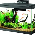 Best-10-Gallon-Fish-Tanks