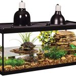Best-20-Gallon-Fish-Tanks