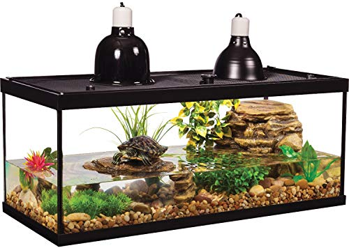 Best 20 Gallon Fish Tanks For 2020 Top 6 Picks Buying Guide