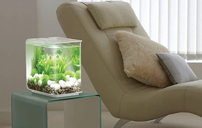 Best-2.5-Gallon-Fish-Tanks