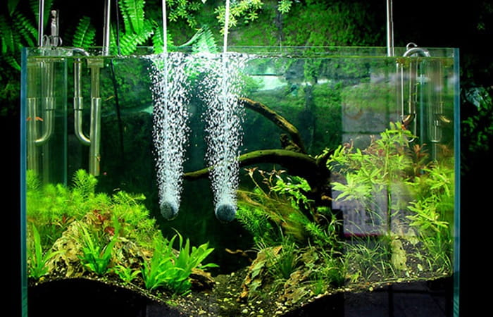 Best-Aquarium-Air-Pumps