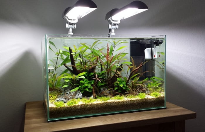 Best-Aquarium-Decorations